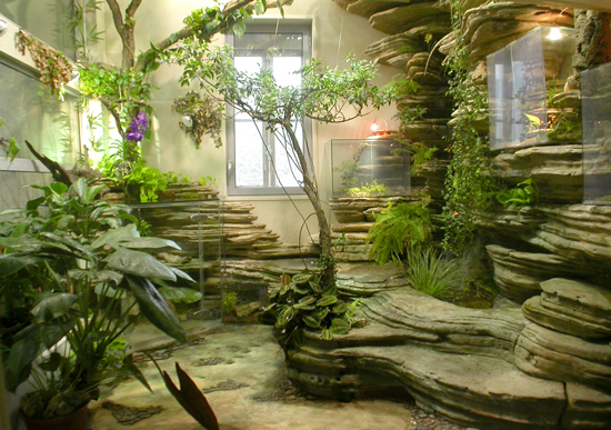 Indoor vertical garden for Decoration mur interieur