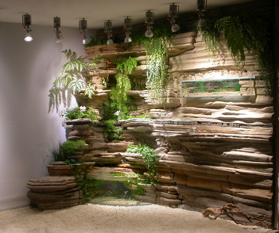 Indoor vertical garden for Indoor fish pond ideas