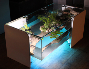 D coration d 39 aquarium biologique grand volume sur paris et for Table salon aquarium