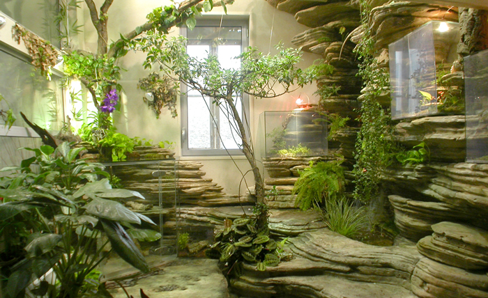 vertical garden , aquarium and pond or the miniature japanese garden