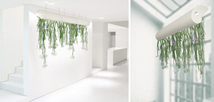 Jardin Suspendu Et Bio Design