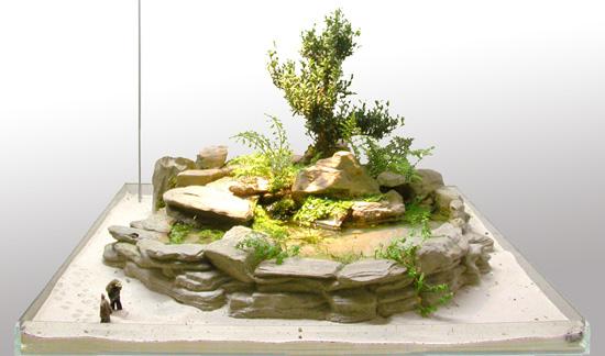 Jardin japonais miniature intérieur où la rigueur, l\'ordre et l ...